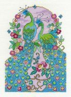 bk1565-peacocks-5391-p